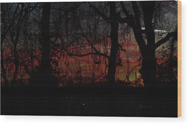 Sunrise Wood Print featuring the photograph Early Morning Sunrise by Ericamaxine Price