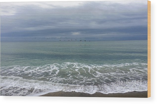 Beach Wood Print featuring the photograph Flying Weather by Nancy L Marshall