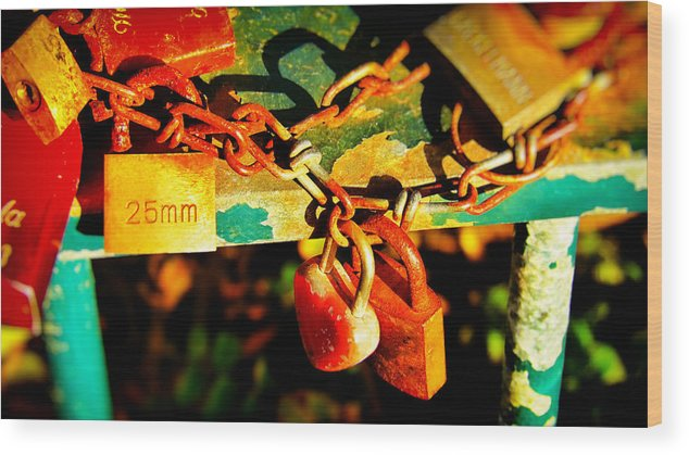 Key Photographs Wood Print featuring the photograph Keys Of Love And Life by Nicole Frischlich