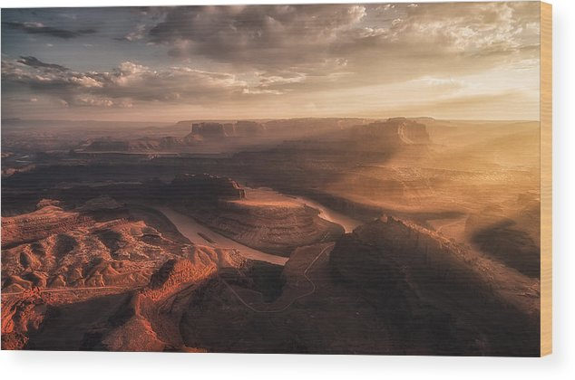 Usa Wood Print featuring the photograph Light Blades by Ren? Colella