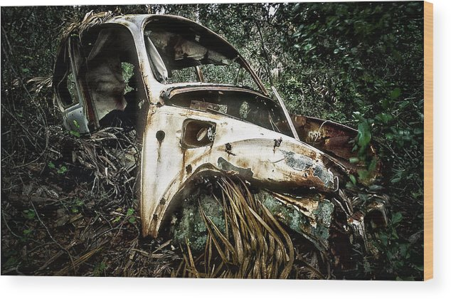Car Wood Print featuring the photograph Lost In The Woods by Patrick M Lynch