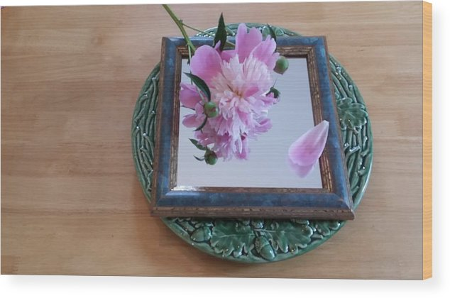 Still Life Wood Print featuring the photograph Peony Square Circle Sora's Flower by Mark Victors
