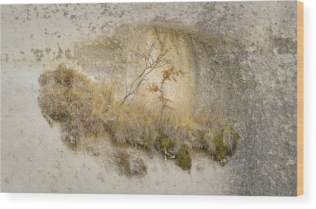 Abstract Wood Print featuring the photograph Precarious Existence by Jim Kelcher