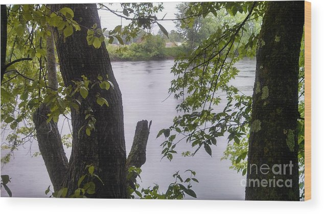 River Wood Print featuring the photograph Rainy Day At The River by Lisa Gifford