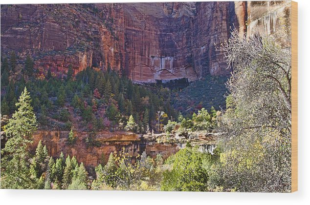 Zion National Park Wood Print featuring the photograph Rocky Cliff - Zion by Jon Berghoff