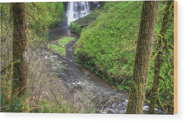 Silver Falls Wood Print featuring the photograph Silver Falls Oregon by Matt Hoffmann