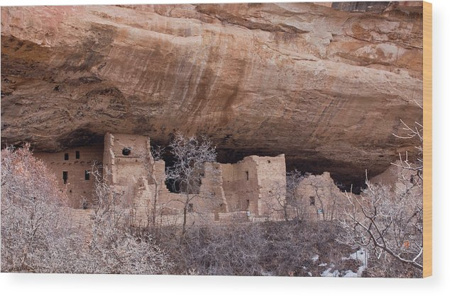 Mesa Wood Print featuring the photograph Spruce Tree Cliff Dwelling by Claus Siebenhaar