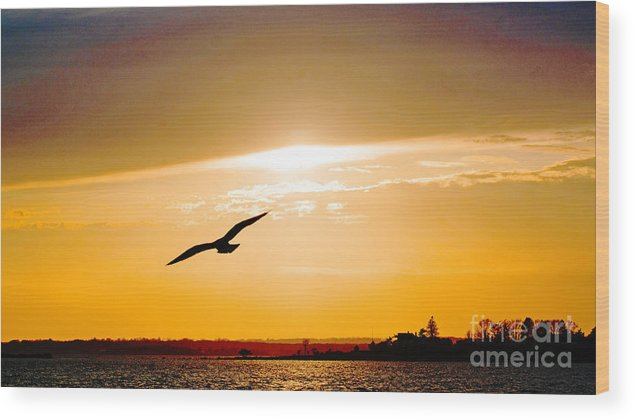 Sunset Wood Print featuring the photograph Sunscaped by Joe Geraci