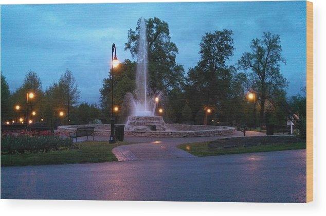 Vander Veer Botanical Park Fountain Wood Print featuring the photograph Vander Veer Fountain At Sunset by Heidi Brandt