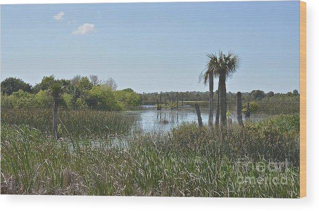 Wetlands Wood Print featuring the photograph Viera Wetlands by Carol Bradley