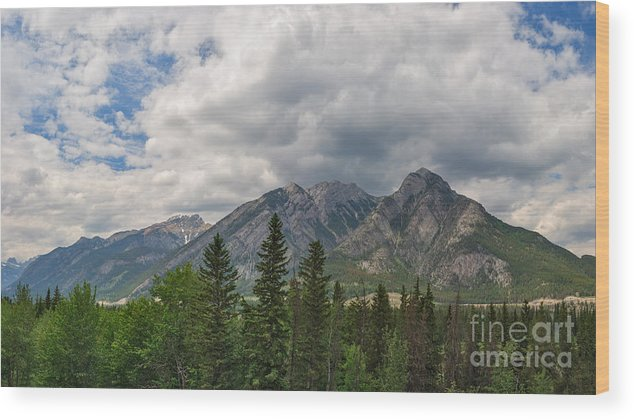 Wide Angle Wood Print featuring the photograph Wide Angle by Charles Kozierok