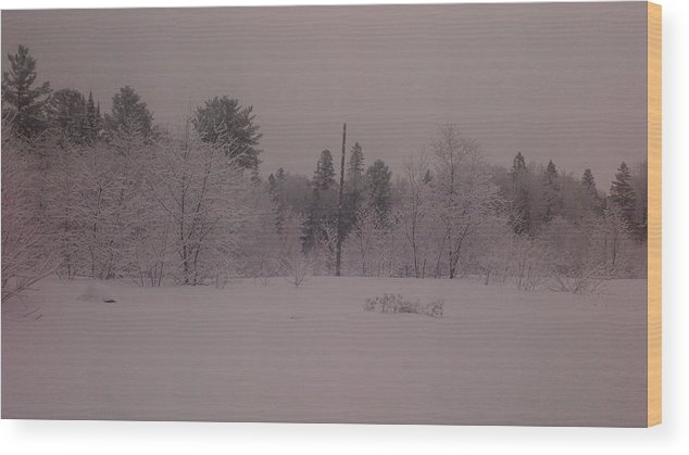 Landscape Winter Wood Print featuring the photograph Winter Delight by Richard Hodge
