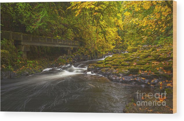 Creek Wood Print featuring the photograph Grist Mill Creek by Mike Reid