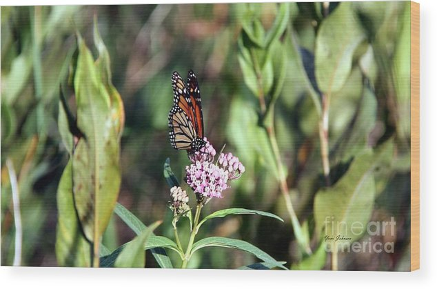 Monarch Wood Print featuring the photograph Monarch On The Wild Flowers by Yumi Johnson