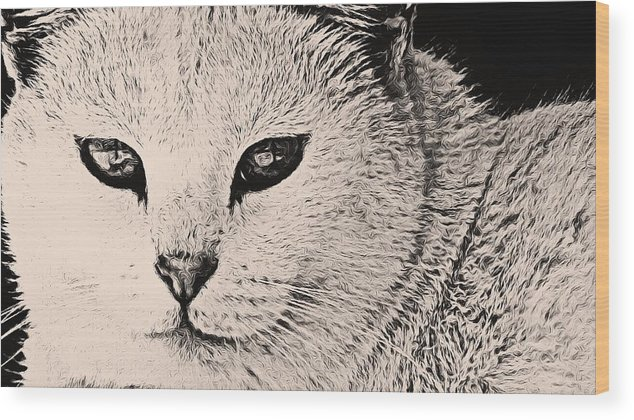 Cats Wood Print featuring the photograph Smirk by Yvette Christine