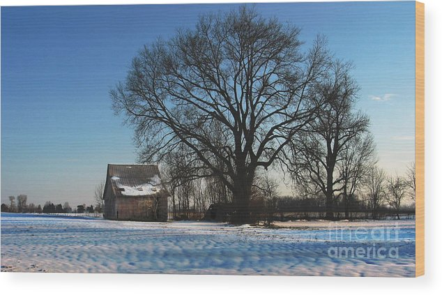 Winter Wood Print featuring the photograph Winter Morning by Jerry Hellinga