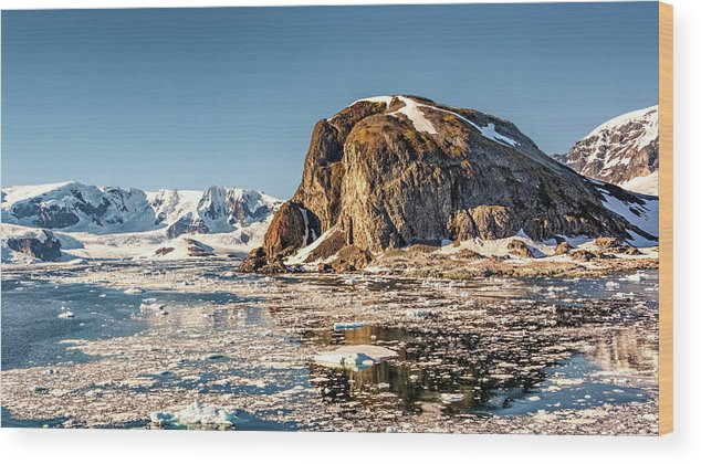 Antarctica Wood Print featuring the photograph Icy Water by Maria Coulson