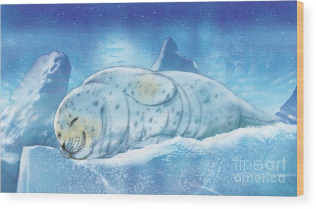 Animals Wood Print featuring the painting Arctic Seal by Tracy Herrmann