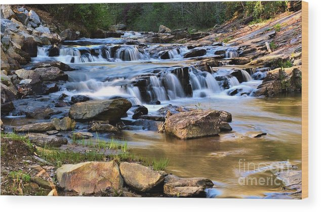 Toccoa Falls College Wood Print featuring the photograph Below Toccoa Falls by Dennis Nelson