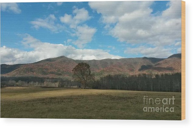 Cades Cove Wood Print featuring the photograph Cades Cove In Autumn by Maxine Billings
