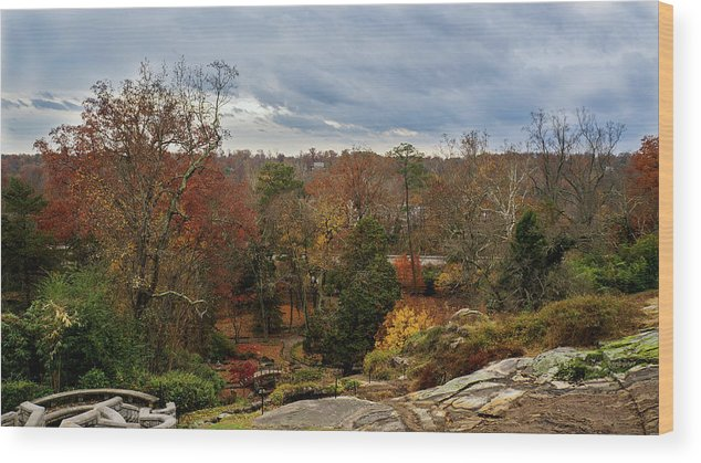 Fall Wood Print featuring the photograph Fall by Mecoes Florance