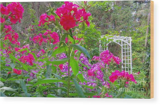 Nature Wood Print featuring the photograph Garden In The Woods by Brenda Ketch