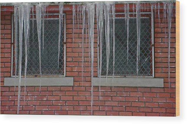 Ice Wood Print featuring the photograph Icicles 2 - In Front Of Windows Off Red Brick Bldg. by Steve Ohlsen