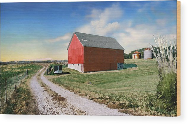 Barn Wood Print featuring the photograph Kansas Landscape II by Steve Karol