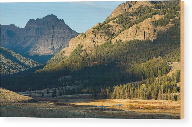 Yellowstone Wood Print featuring the photograph Lamar Valley Impressions #1 by Dvir Barkay