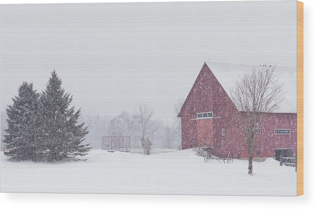 Winter Wood Print featuring the photograph Northeast Kingdom Snowfall by Alan L Graham