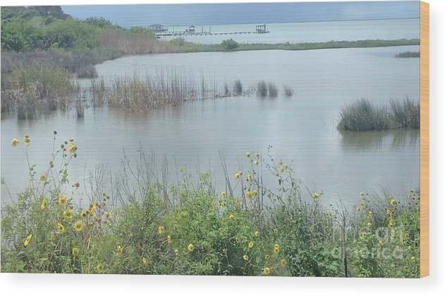 Texas Coastal Landscape Wood Print featuring the photograph On A Clear Day by Karen Hamby