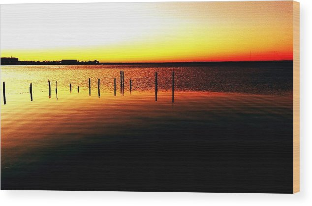 Wood Print featuring the digital art Quiet Time At Lake Mary by Alfred Blaho