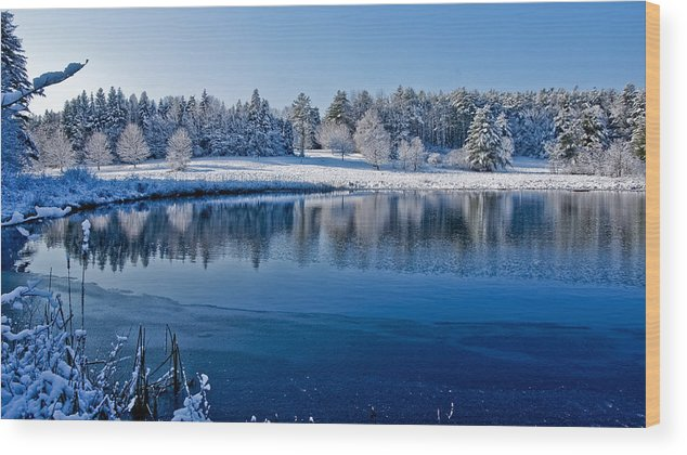 Winter Wood Print featuring the photograph Winter Lake Scene 2 by Edward Myers