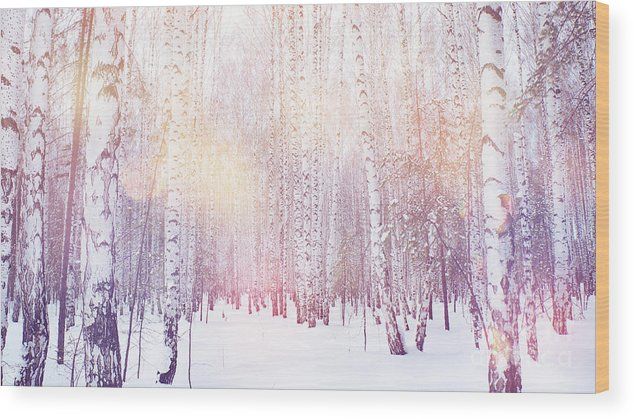 Magic Wood Print featuring the photograph Winter Magic Birch Grove by Ataly