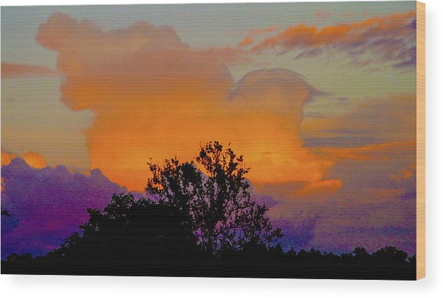 Sky Wood Print featuring the photograph Burning Bush by Robert J Andler