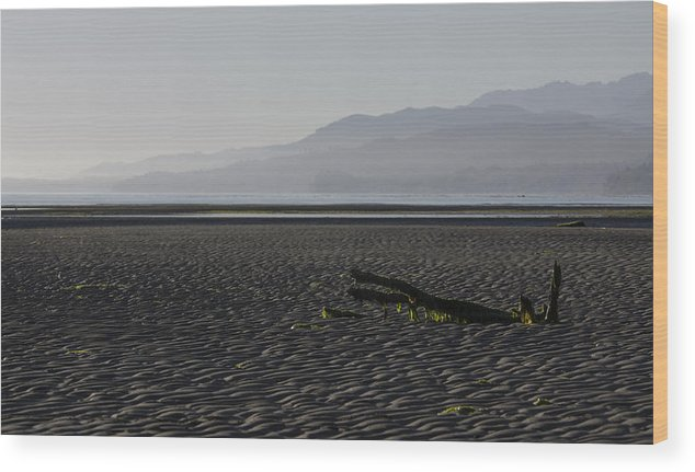 Beach Wood Print featuring the photograph North Horizon by Chad Davis