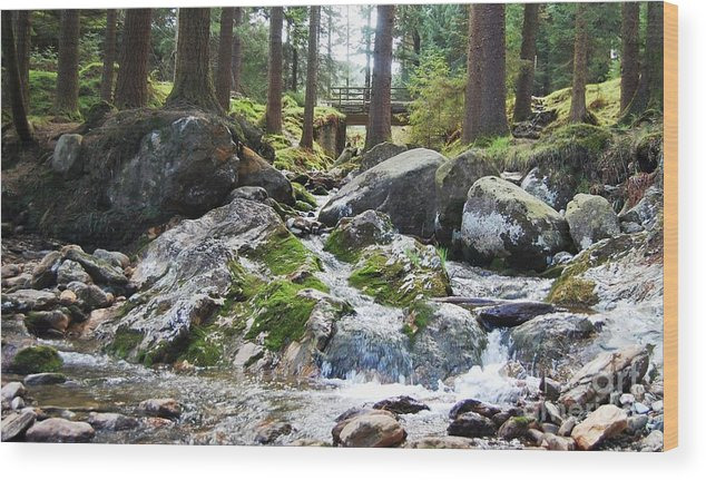 Ireland Art River Woodland Outdoors Rocks Travel Stock Shot Rural Wicklow Countryside Sylvan Setting Wood Print featuring the photograph A River Scene In Wicklow, Ireland by Courtney Dagan