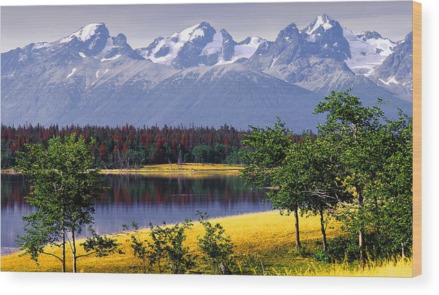 Nemiah Valley Wood Print featuring the photograph Nemiah Valley by John Bartosik