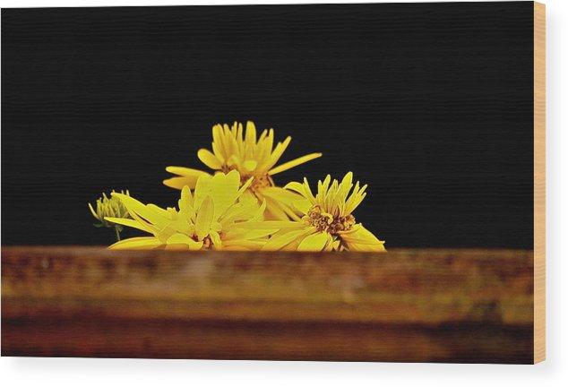 Yellow Glow Beauty Nature Wood Print featuring the photograph Peek Ah Boo by Gloria Warren