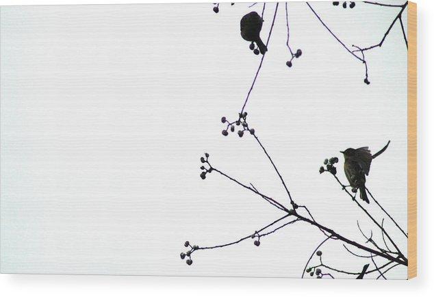 Birds Wood Print featuring the photograph Winterbirds Duet by Paula OReilly