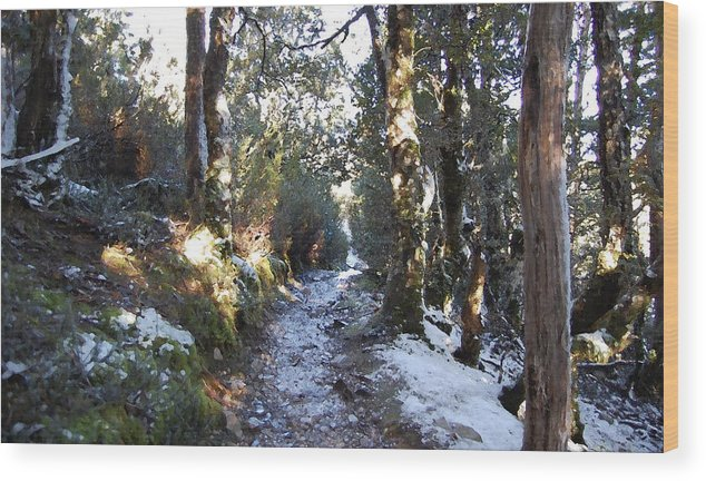 Landscape Wood Print featuring the painting King Billy Forest Cradle Mountain by Sarah King