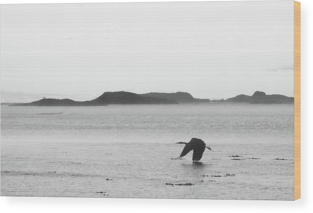 Beach Wood Print featuring the photograph Down East Maine by Trace Kittrell