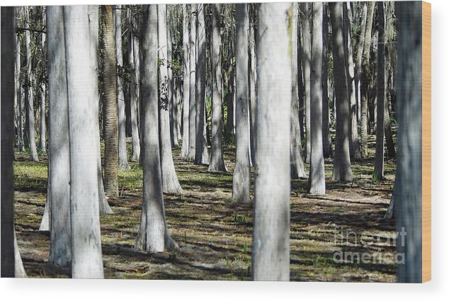 Wood Print featuring the photograph 9182 by Don Solari
