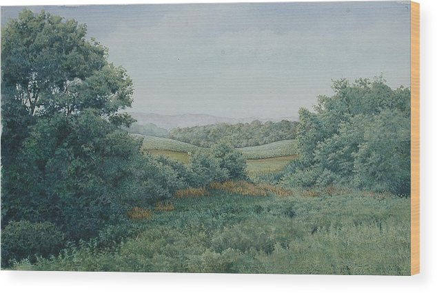 Landscape Wood Print featuring the painting Camillus Field by Stephen Bluto