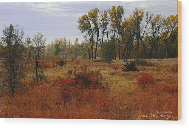 Landscape Wood Print featuring the photograph Creek Valley Beauty by Scott Washburn