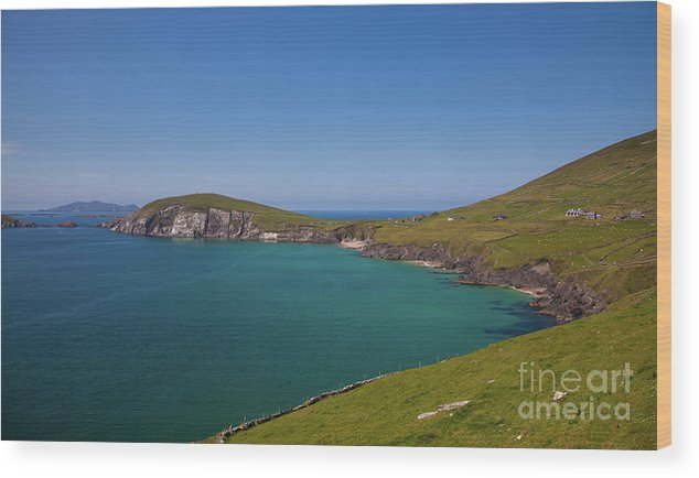 Kerry Coast Wood Print featuring the photograph Dunmore Head by Gabriela Insuratelu