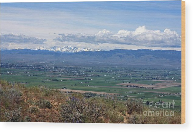 Ellensburg Wood Print featuring the photograph Ellensburg Valley With Sagebrush And Lupine by Carol Groenen