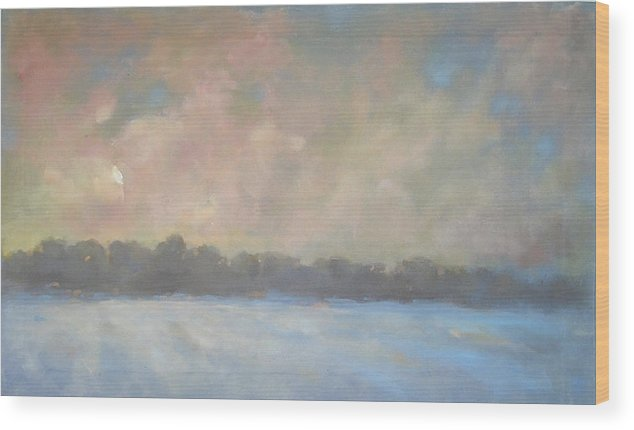 Wood Print featuring the painting Last Light by Mary Brooking