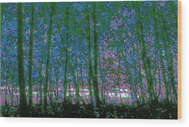Landscape Wood Print featuring the photograph Looking Through The Trees by Lyle Crump