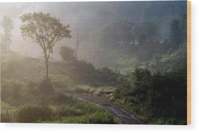 Landscape Wood Print featuring the photograph Nature by Robert Ruscansky